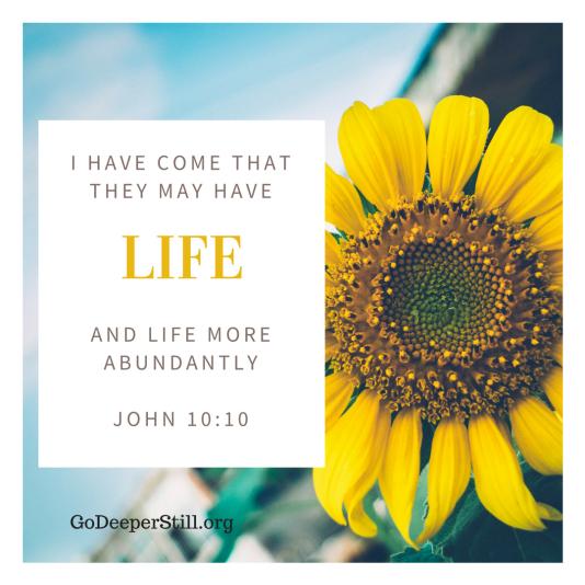 Life more abundantly (1)